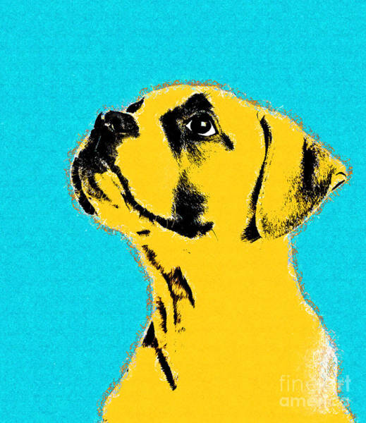 Aqua Blue Digital Art - Dog Thing - 01c15a9 by Variance Collections