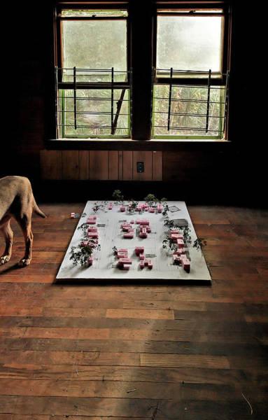 Photograph - Dog Town by Robert Harshman