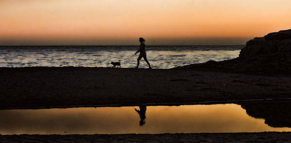 Photograph - Dog Walker At Sunset by Grace Dillon