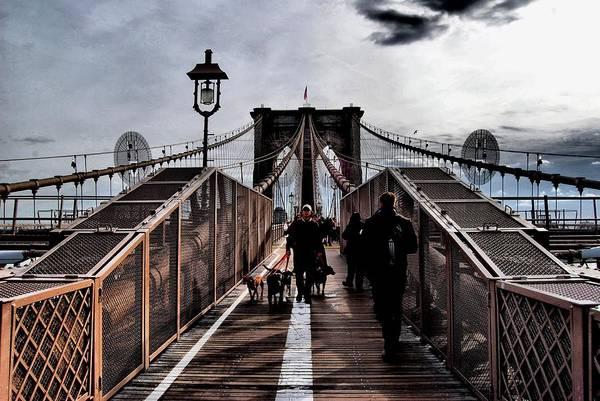 Dog Walker Photograph - Dog Walker Brooklyn Bridge by Wayne Higgs