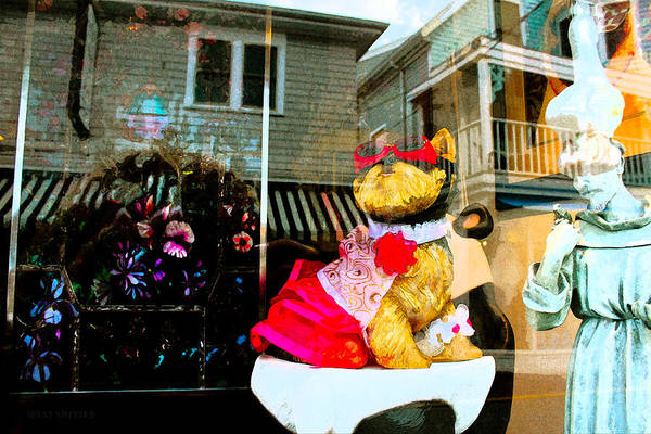Photograph - Doggie In The Window by Susan Vineyard
