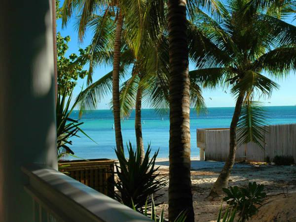Photograph - Dog's Beach Key West Fl by Susanne Van Hulst