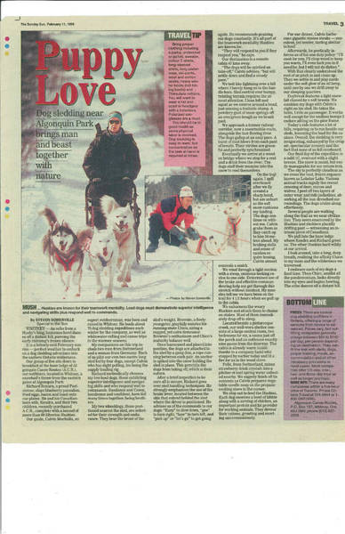 Photograph - Dogsledding Travel Article Toronto Sun by Steve Somerville