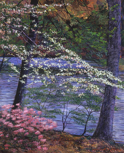Dogwood Painting - Dogwood And Azalea Blooms by David Lloyd Glover