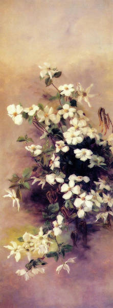 Wall Art - Painting - Dogwood And Elderberry I I by Abby Hill