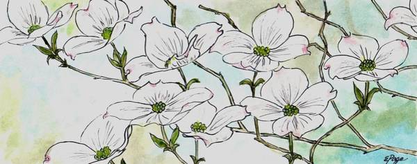 Painting - Dogwood Blossoms by Emily Page