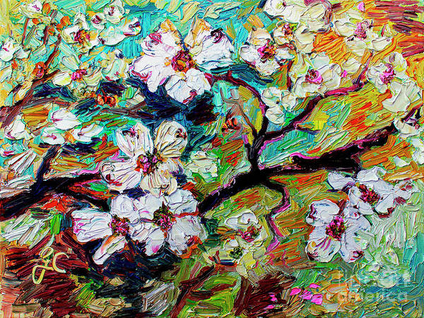 Painting - Dogwood Blossoms by Ginette Callaway