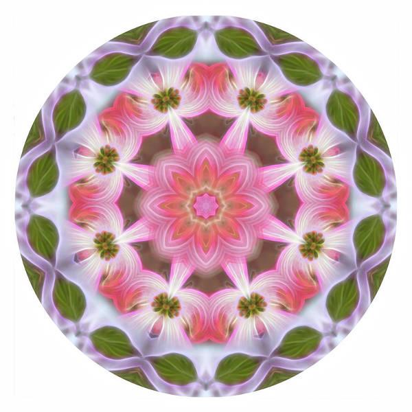 Digital Art - Dogwood Energy Mandala by Beth Sawickie