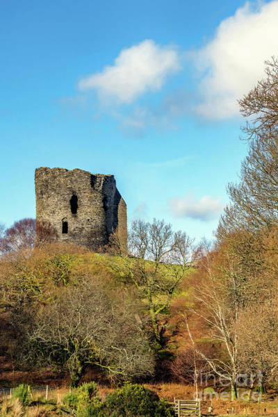 Photograph - Dolbadarn Castle Wales by Adrian Evans