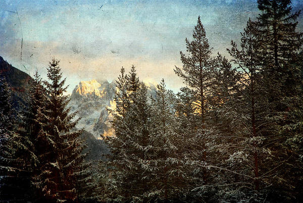 Photograph - Dolomiti by Vittorio Chiampan