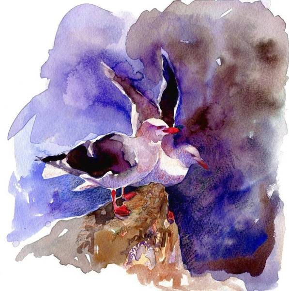 Painting - Dolphin Gulls by Abby McBride