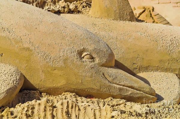 Photograph - Dolphin Sand Castle Sculpture On The Beach 799 by Ricardos Creations