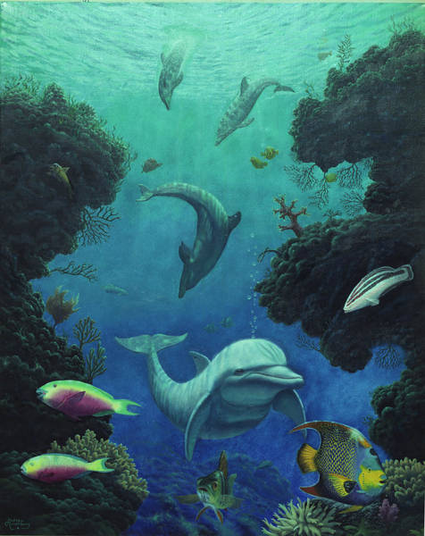 Annenberg Painting - Dolphin Smiles by Andrew Annenberg