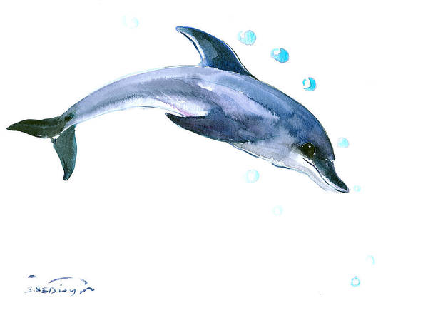 Dolphins Wall Art - Painting - Dolphin by Suren Nersisyan