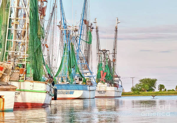 Dolphin Tail - Docked Shrimp Boats Art Print