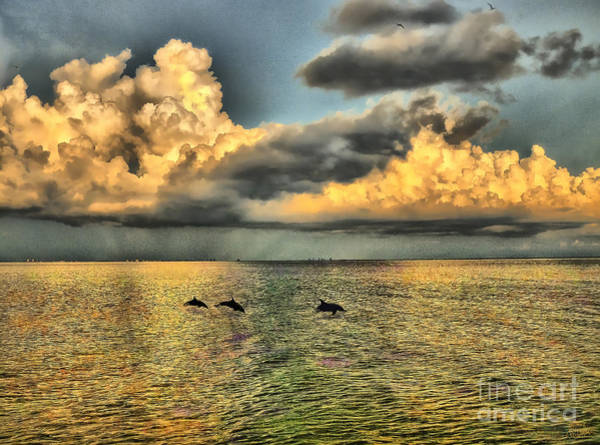 Photograph - Dolphins Play At Sanibel Island by Jeff Breiman