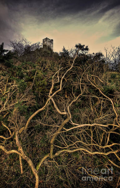 Fortification Wall Art - Photograph - Dolwyddelan Castle by Meirion Matthias