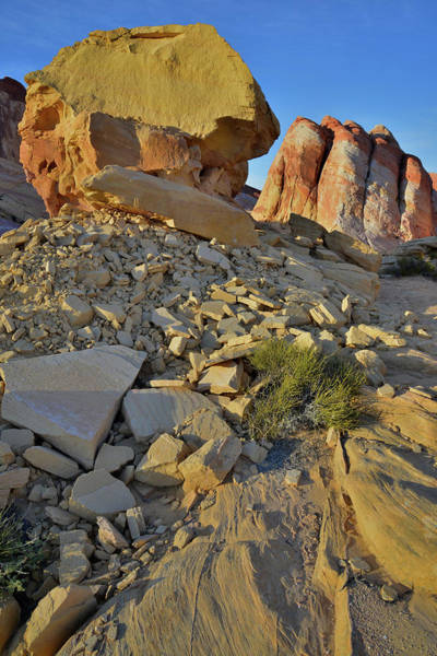 Photograph - Dome And Throne In Valley Of Fire by Ray Mathis