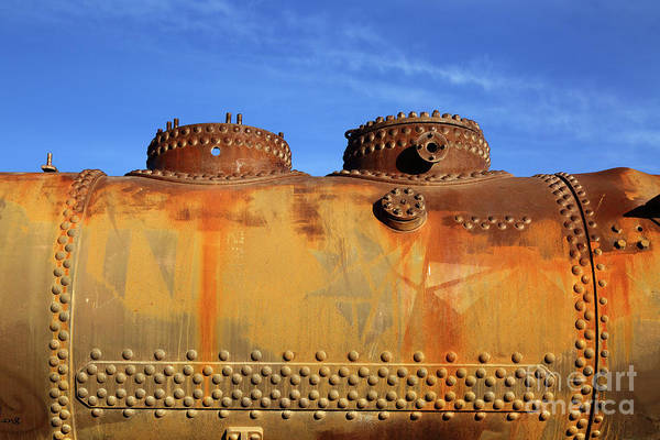 Photograph - Domes Rust And Rivets by James Brunker