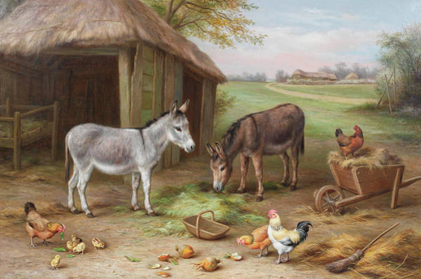 Breeding Painting - Donkeys And Chickens In A Farmyard by Edgar Hunt