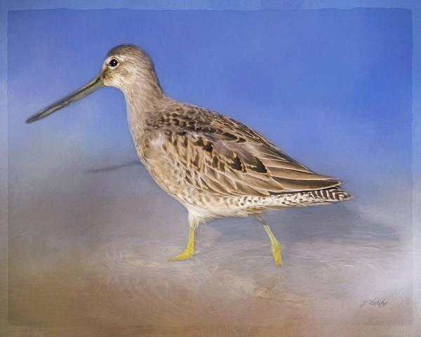 Painting - Don't Change - Wild Bird Art by Jordan Blackstone