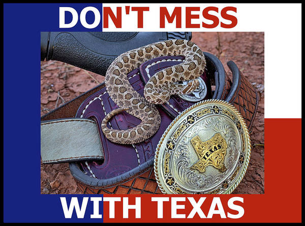 Photograph - Don't Mess With Texas Flag by JC Findley