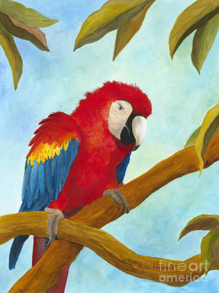 Painting - Dont Ruffle My Feathers by Phyllis Howard
