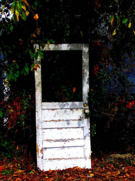Photograph - Door by Susie Weaver
