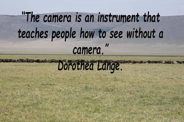 Photograph - Dorothea Lange Quote by Tony Murtagh