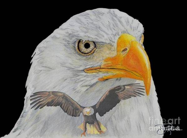Drawing - Double Eagle by Bill Richards