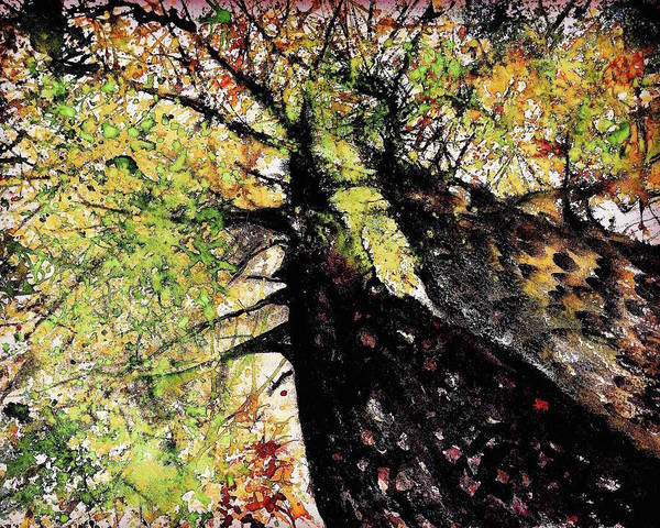 Looking Up Painting - Double Trees Red And Green  by Julia S Powell