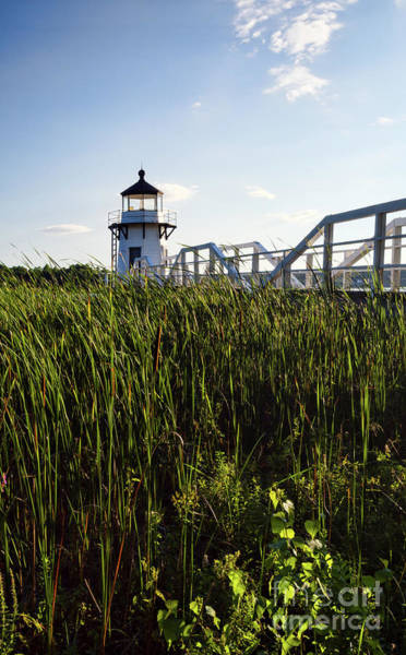 Photograph - Doubling Point Light, Arrowsic, Maine #40012 by John Bald