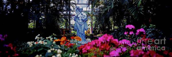 Photograph - Douglas Garfield Park Conservatory  Chicago by Tom Jelen