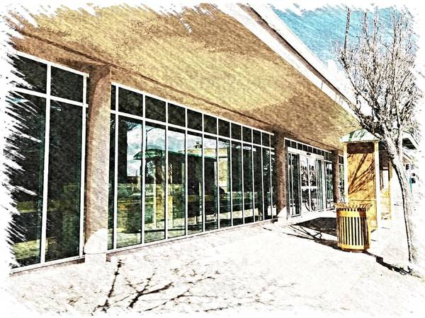 Photograph - Douglas Public Library - Digital Sketch by Tatiana Travelways