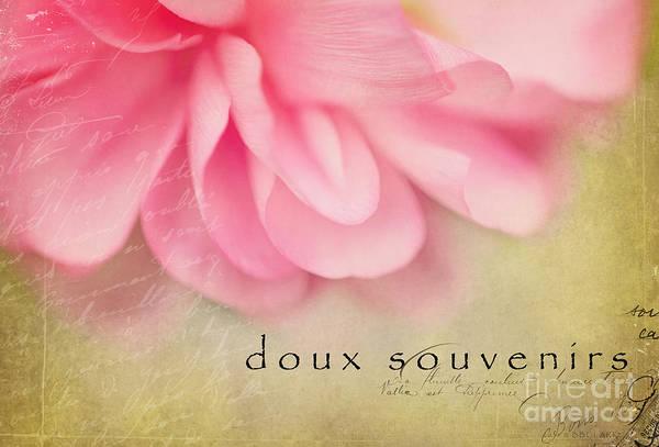 Photograph - Doux Souvenirs by Beve Brown-Clark Photography
