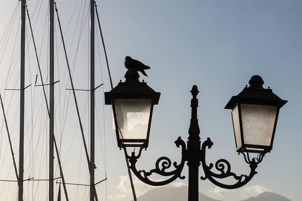 Photograph - Dove Perch - Quaint Cast Iron Harbor Lights And Boat Masts - Left by Georgia Mizuleva
