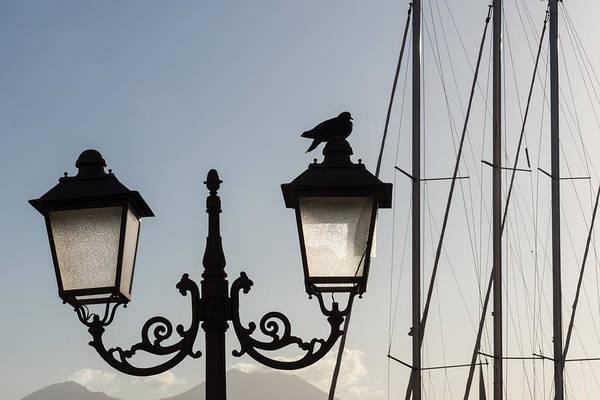 Photograph - Dove Perch - Quaint Cast Iron Harbor Lights And Boat Masts - Right by Georgia Mizuleva
