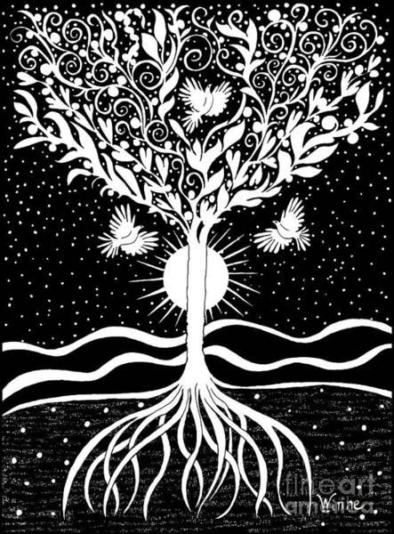 Drawing - Dove Tree by Lise Winne