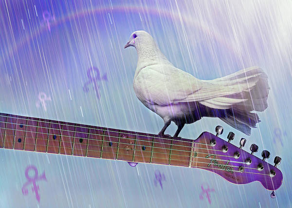 Prince Rogers Nelson Wall Art - Digital Art - Doves Cry, Doves Cry by Mal Bray
