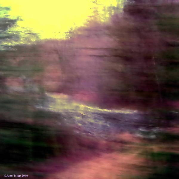 Wall Art - Photograph - Down By The River by Jane Tripp