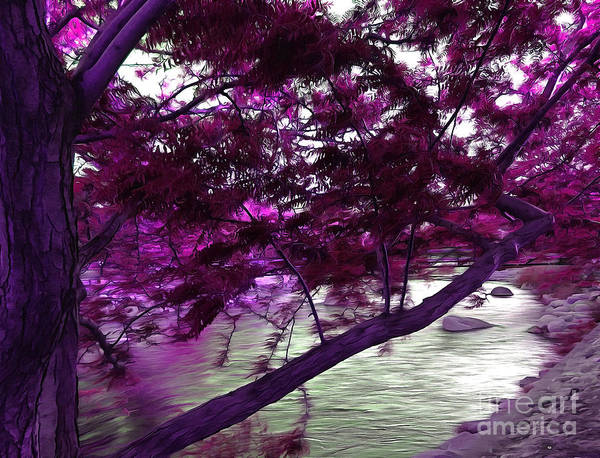 Truckee River Photograph - Down By The River by Krissy Katsimbras