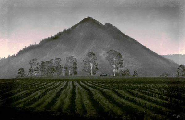 Wall Art - Photograph - Down From The Mountain by Holly Kempe
