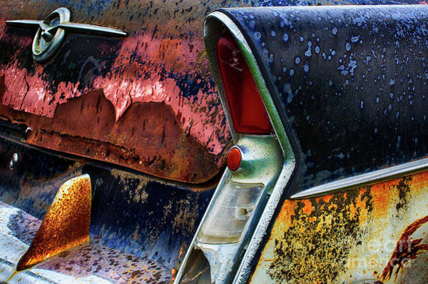 Beyond Repair Photograph - Down In The Dumps 10 by Bob Christopher