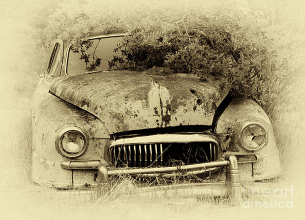 Beyond Repair Photograph - Down In The Dumps 27 by Bob Christopher