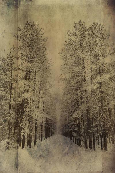 Photograph - Down Memory Lane by Christina VanGinkel