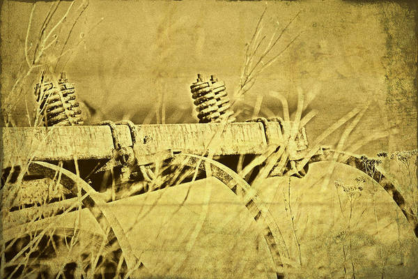 Abandon Wall Art - Photograph - Down On The Farm by Tom Mc Nemar