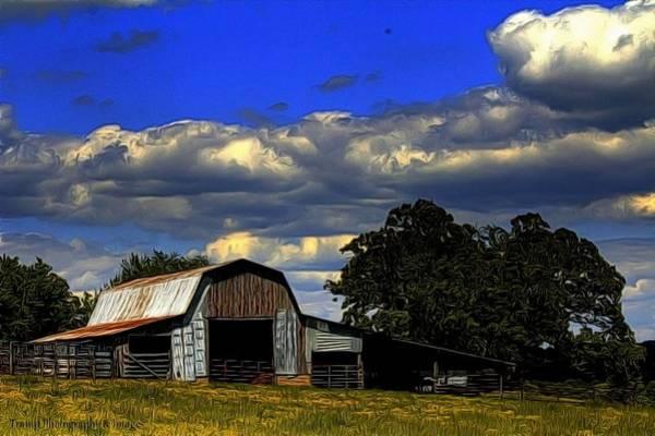 Photograph - Down On The Farm by Wesley Nesbitt