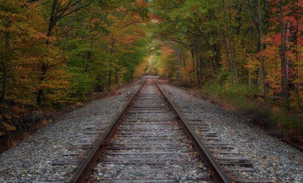 Photograph - Down The Tracks by Darylann Leonard Photography