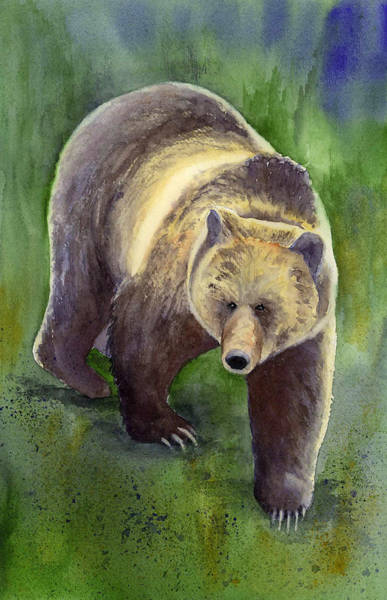 Painting - Downhill Grizzly by Marsha Karle