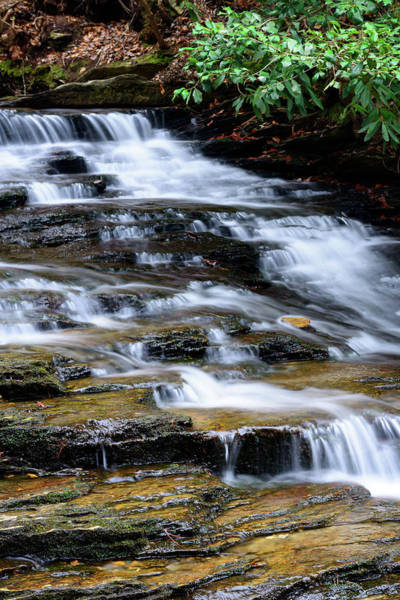 Photograph - Downstream by Michael Scott